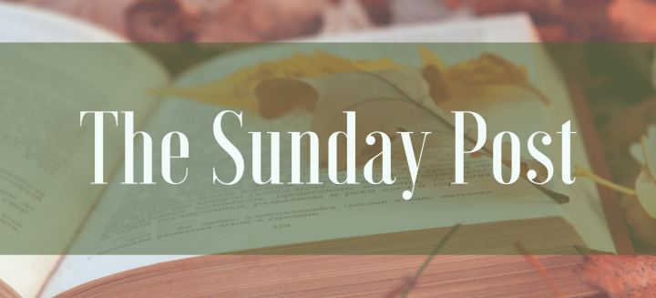 The Sunday Post | Book Cons & Hauls